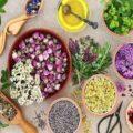 خشکی پوست را با این گیاهان دارویی درمان کنید!