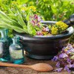 داروهای گیاهی موثر در پیشگیری و درمان سرما خوردگی