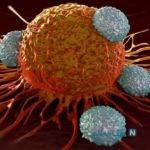 سرطان ارتباطی به کمبود این ویتامین ندارد