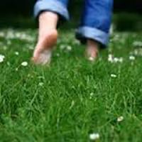 پیادهروی با پای برهنه بر روی چمن را از دست ندهید