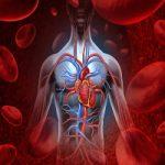 12 نشانه هشدار دهنده گردش خون ضعیف