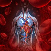 ۱۲ نشانه هشدار دهنده گردش خون ضعیف