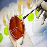 ابرمیکروبها | میکروب های مرگبار مقاوم به آنتیبیوتیکها