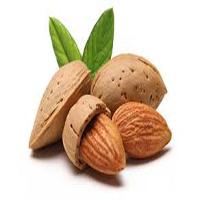 برای درمان یبوست این غذاها را بخورید