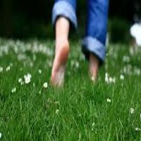 فواید پیادهروی با پای برهنه |اسرار سلامتی و درمانی پابرهنه راه رفتن