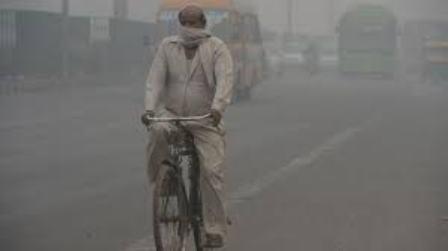 ویتامین B محافظ شما در برابر آلودگی هوا