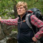 پیاده روی در جنگل چه فایده هایی برای سلامت بدن دارد؟!