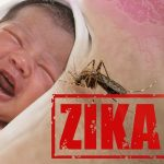 ویروس زیکا چه آسیبی به نوزادان وارد می کند؟!