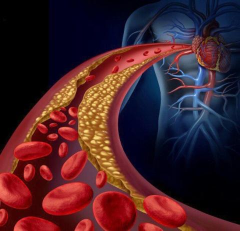 درمان عفونت خون