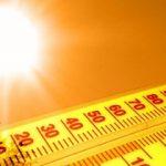 این ضد آفتابهای طبیعی و خوراکی را حتما استفاده کنید