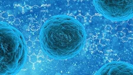 سلولهای بنیادی و نقش فوق العاده ای که در درمان بیماری ها دارند!