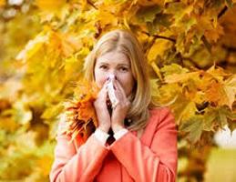 چه کنیم که در پاییز دچار سرماخوردگی نشویم!