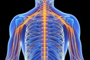 آشنایی با علائم آسیب عصبی از پیشگیری تا درمان