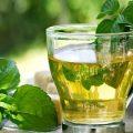 آشنایی با گیاهی معجزهگر در درمان تب و سرفه