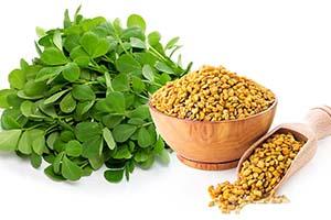 ۵ گیاه موثر برای درمان دیابت نوع ۲