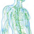 پاکسازی سیستم لنفاوی و از بین بردن همیشگی سلولیت ها
