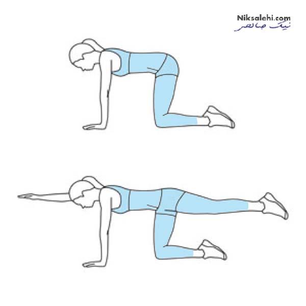 ورزش کف لگن