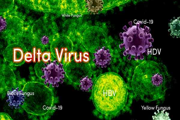 علایم کرونای دلتا ؛قوی ترین نوع ویروس کرونا را بشناسید