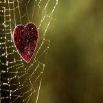 دشمنان عشق را اخراج کنید