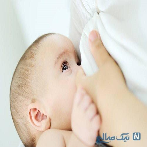 عضو کمیته کشوری تغذیه با شیر مادر