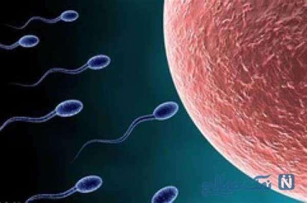 درمان کمبود اسپرم