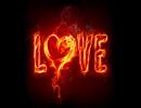 سوختن در تب عشق