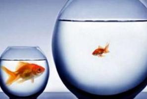 مقایسه کردن زندگیتان با دیگران نشانه بازنده بودن است!