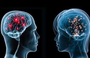 تفاوت مغز مردان با مغز زنان