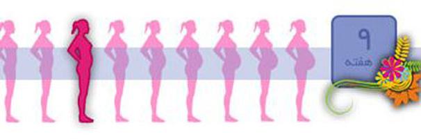 مراقبت های لازم و ضروری بارداری در هفته نهم بارداری!