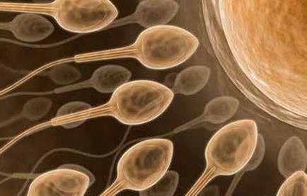 عوامل تاثیرگذار بر کاهش تولید اسپرم در مردان!
