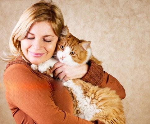 تماس با گربه در بارداری چه عوارضی به همراه دارد؟!