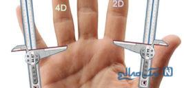 آلت تناسلی مردان و رابطه طول آن با اندازه انگشت و سایز پا