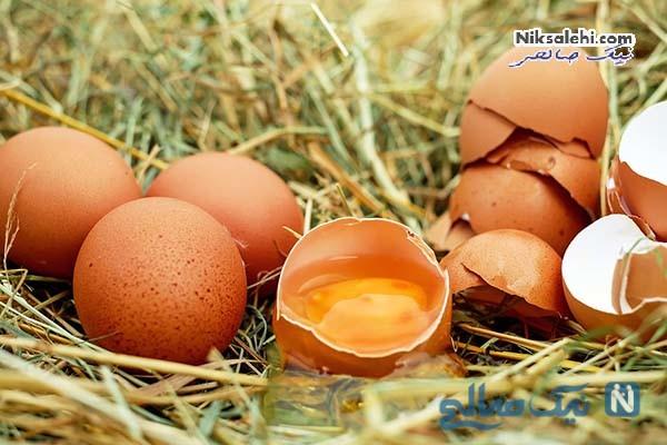 تخم مرغ یک ویاگرای خانگی