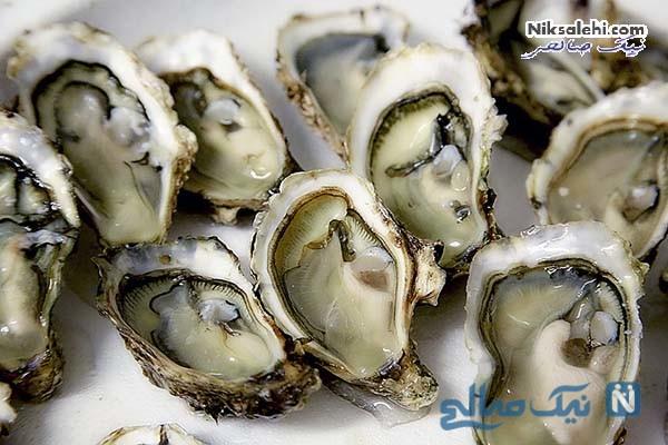 صدف Oysters ویاگرای قوی و طبیعی