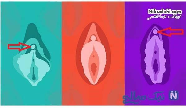 ارضا شدن زنان