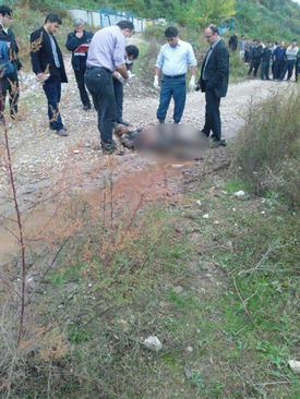 راز جسد خونین دختر جوان در جنگل های مازنداران + تصاویر (+۱۸)