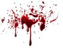 قتل هولناک دختر عکاس بخاطر مقاومت دربرابر نیت شیطانی پسر جوان در ارومیه