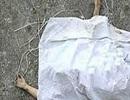 جزییات خودکشی دردناک دختر دانش آموز در مشهد