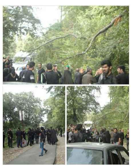 جزئیات سقوط درخت بر روی عزاداران حسینی در بهشهر با ۱۲ کشته و زخمی + عکس