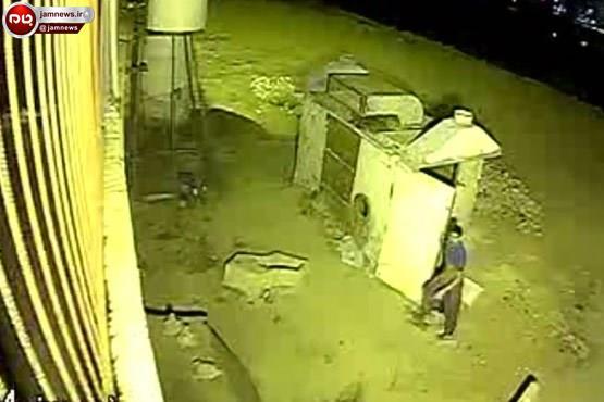 صحنههای هولناک جنایت شبانه