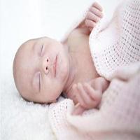 نوزادی در شکم حیوان مرده میلیونها کاربر اینترنتی را شوکه کرد! +عکس