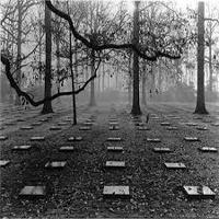پسر نه ساله را زنده زنده در قبرستان به خاک سپردم! +عکس