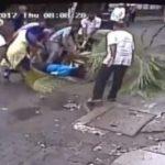 سقوط درخت مرگ دردناک مجری معرف تلویزیون را رقم زد