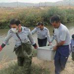 کشف جسد الهه 2 ساله در چاه فاضلاب پس از چند روز از گم شدنش +عکس