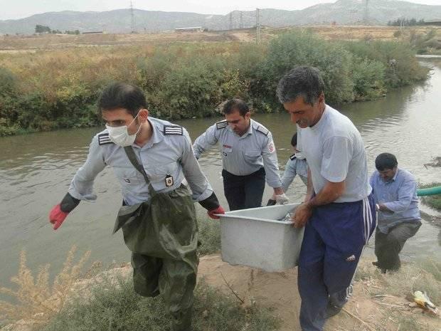 کشف جسد الهه ۲ ساله در چاه فاضلاب پس از چند روز از گم شدنش +عکس