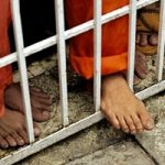 زندانیکردن در قفس کبوتر برای باجگیری میلیونی +عکس