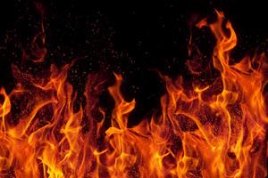 جزییات به آتش کشیده شدن پویا اشکانی سرباز پلیس در کرج +عکس قاتل