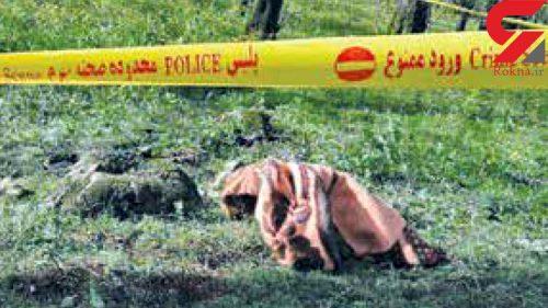 نزاع مرگبار جنگلهای بابل
