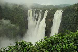 زنده ماندن معجزه آسای پسر ۳ ساله پس از سقوط از آبشار ۷۳ متری!+تصاویر