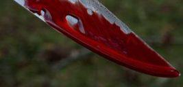 حرف های تلخ مرد همسرکش در پی قتل در پارک ارغوان +عکس